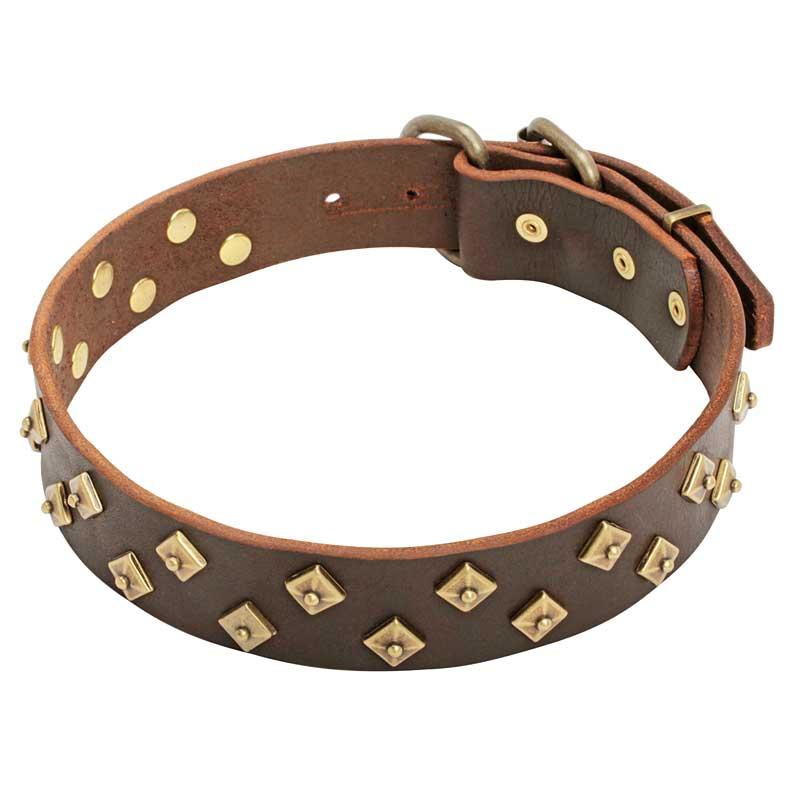 Collier de chien original en cuir pyramides sublimes c18 - Collier pour chien original ...