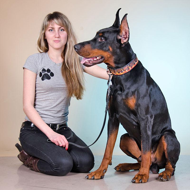 collier pour chien avec motif