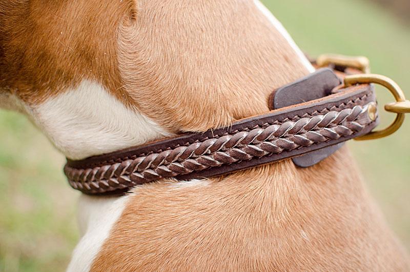 collier chien cuir tresse