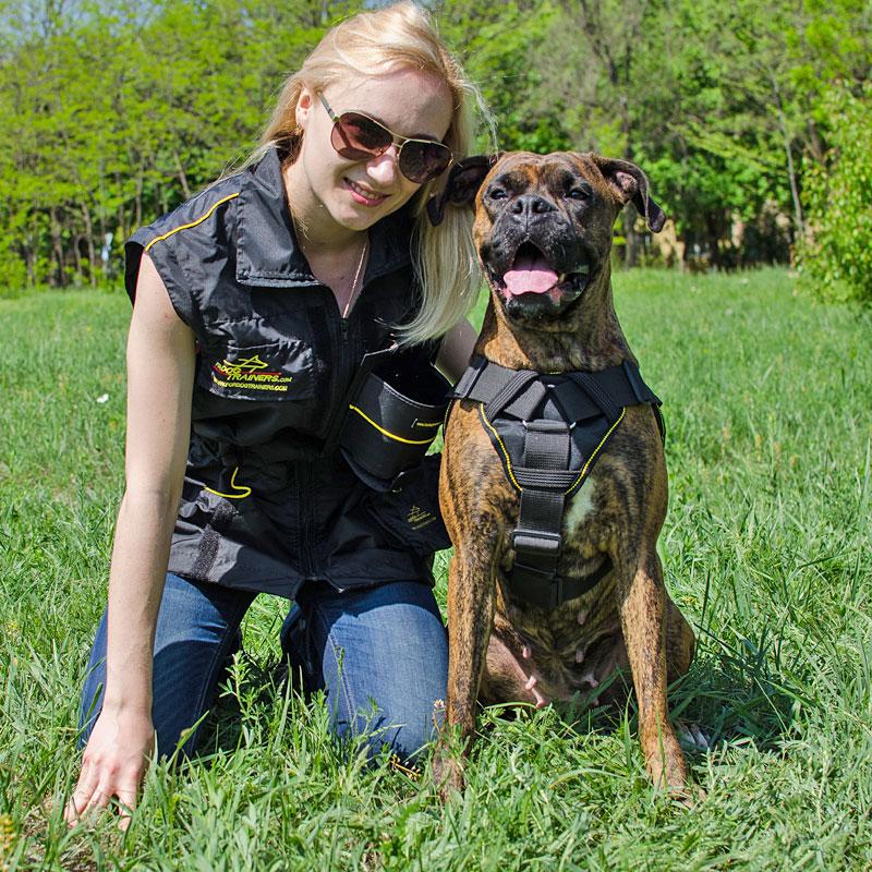 Harnais universel pour chien Boxer «Force de traction» - H12